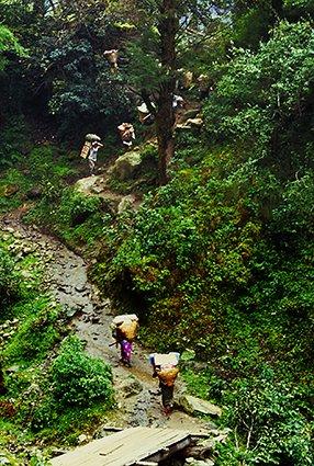 Sagarmata Park (NEPAL)
