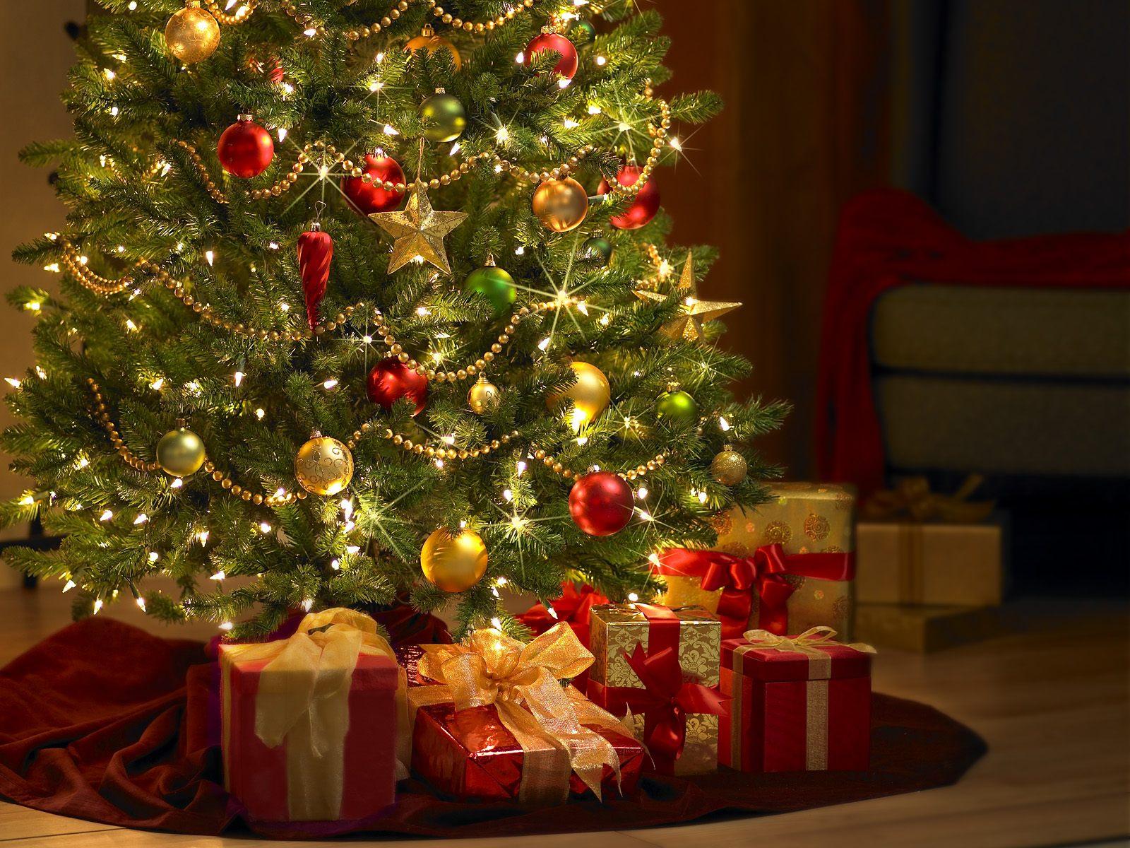 http://3.bp.blogspot.com/_XWfvAvu3mE0/TO5O5wDysXI/AAAAAAAAAA8/-U5SBQeEe0M/s1600/Xmas_Fun_-_Warm_Holiday_Wishes.jpg