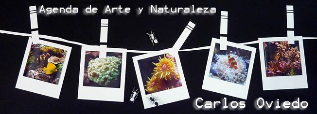 Agenda de Arte y Naturaleza, Carlos Oviedo