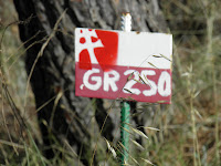 Señal GR250 y camino del apostol