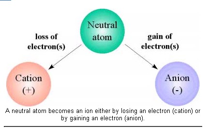 ... positively charged ion (cation) and a negatively charged ion (anion