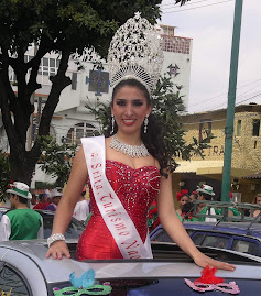 Mara Isabel Ceballos Meza, Seorita Turismo Naolinco 2008