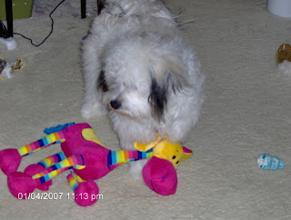 Nisie and Her Elephant