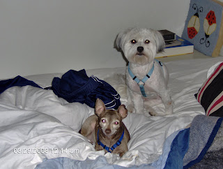 Jake and Nisie on the Bed