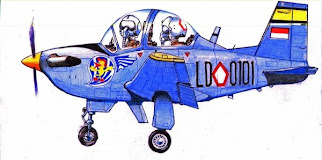 My Aircraft Caricature