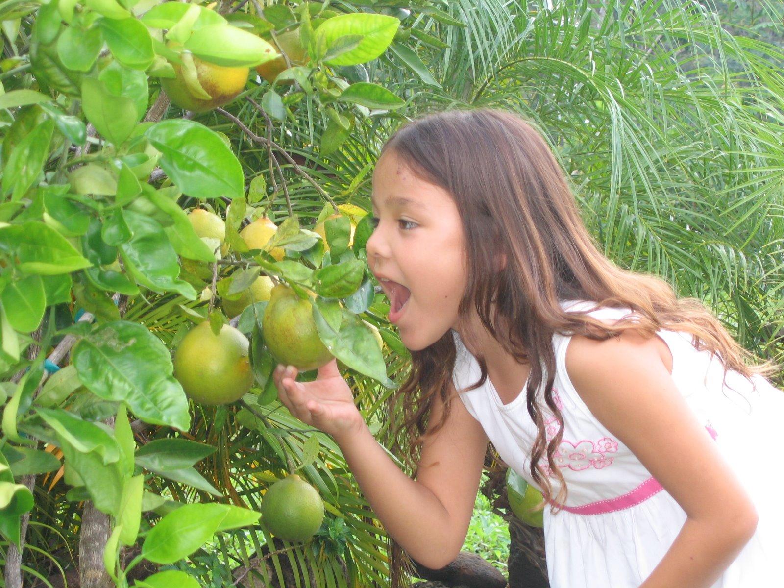 [Hawaii+Nov_Dec+2008+094.JPG]