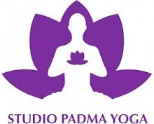 Yoga além da prática