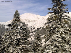 Χιονισμένα τοπία & όχι μόνο!