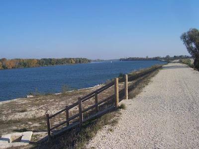 Digue de protection de la Camargue en bord de Rhône