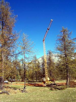 Fuste : le chantier avec la grue et les troncs d'arbres.