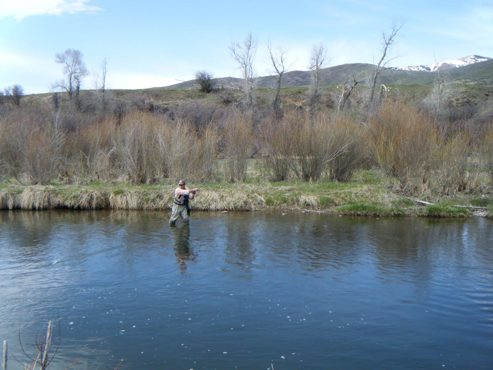 Clay 39 s fishing journal weber river utah for Weber river fishing