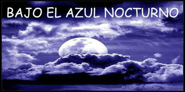 BAJO EL AZUL NOCTURNO