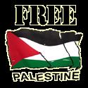 Save Palestine:::
