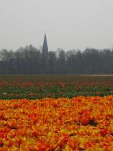 saudades da Holanda!!