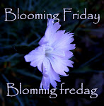 Each Friday, is Blooming Friday,here at Roses and stuff. You are all most welcome to participate!