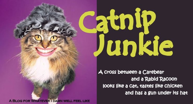 Catnip Junkie