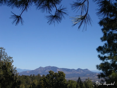 View from the Hackney House, Cedar Crest, NM, 24-Dec-05