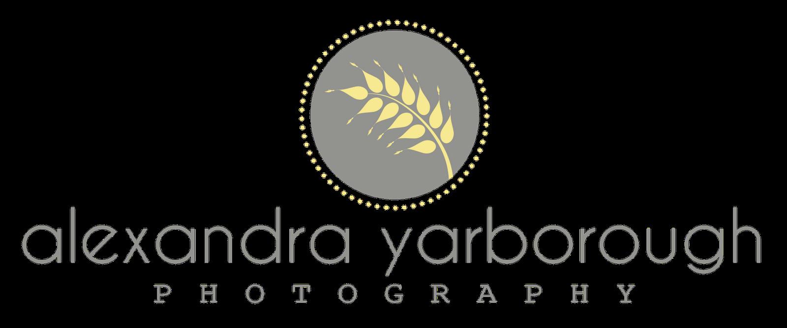 Polish Logo Design: New Photography Logos