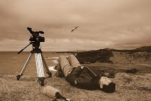 Mon métier : réalisateur...
