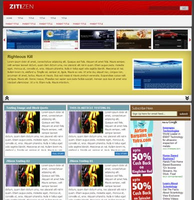 Zitizen Professional Blogger  Template