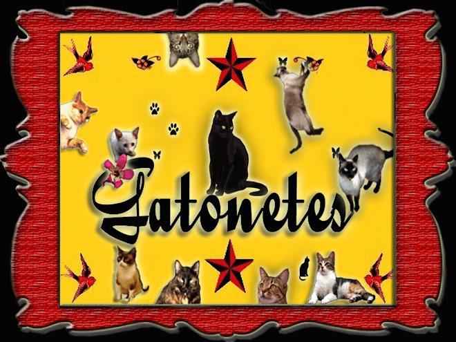 Gatonetes