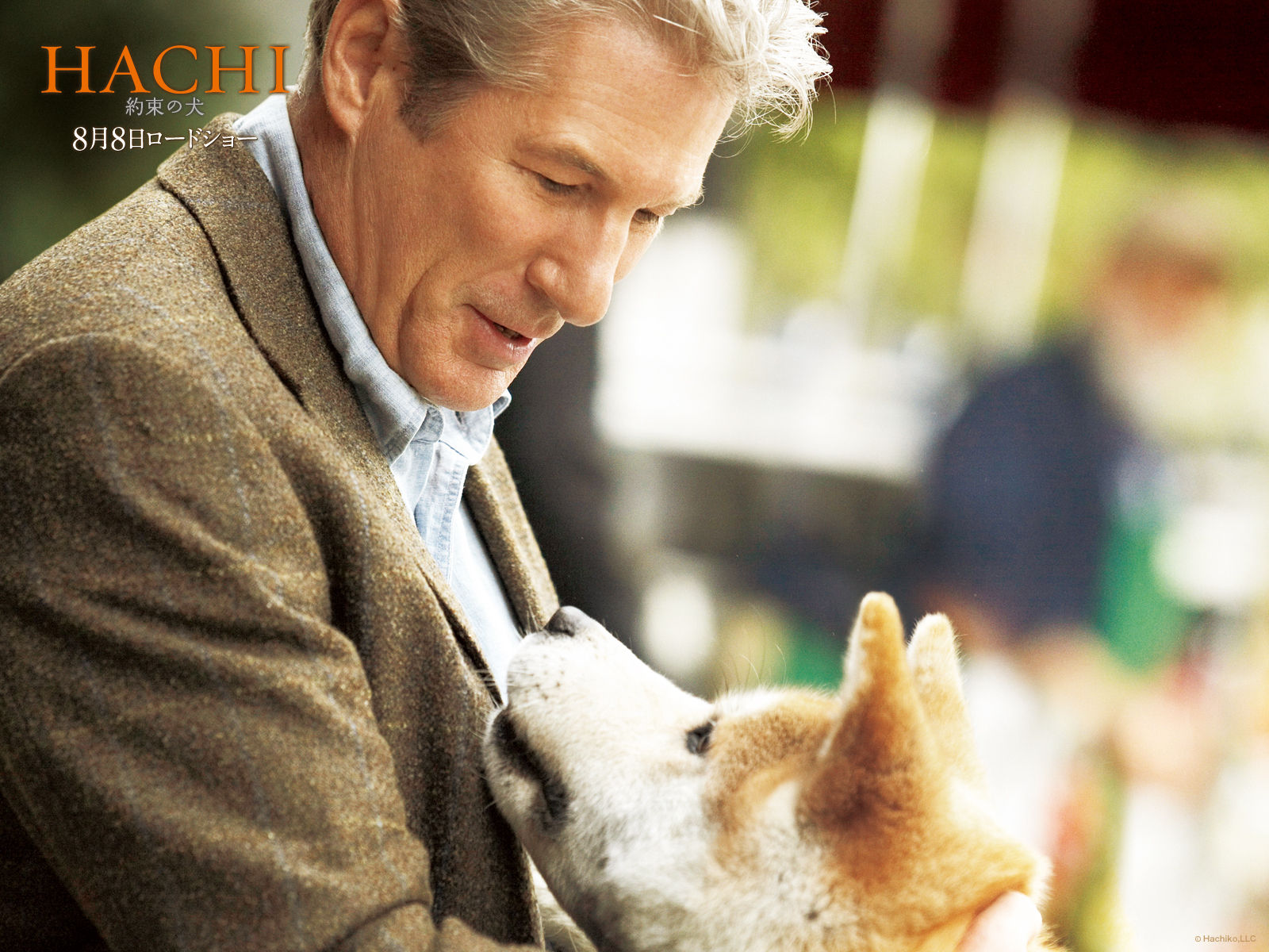 Hachiko - a dog story