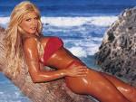 WWE Diva Torrie Wilson naked, WWE Diva Torrie Wilson nude