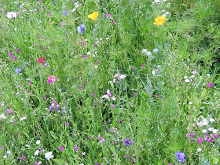 wild flowers (onemorehandbag)