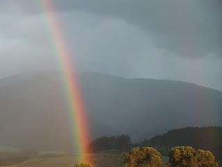 rainbow(onemorehandbag)