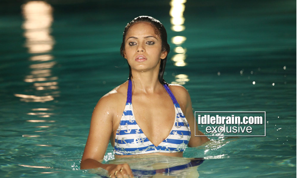Celeb PHOTO » Sexy Girls Neetu Chandra in Hot Bikini