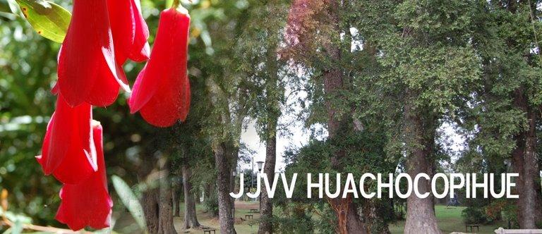 JJVV Huachocopihue
