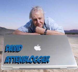 David AttenBlogger