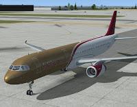 avion au parking