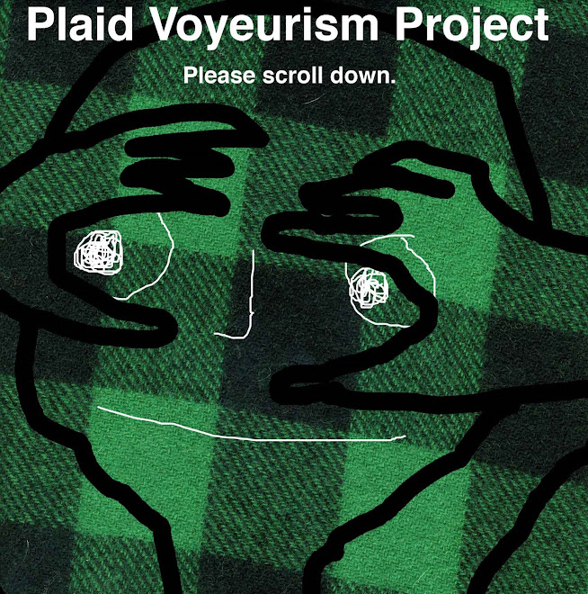 Plaid Voyeurism Project