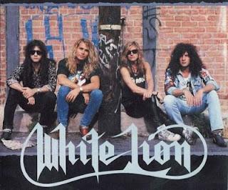 white_lion_images