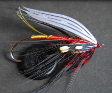 Tri-Color Spey