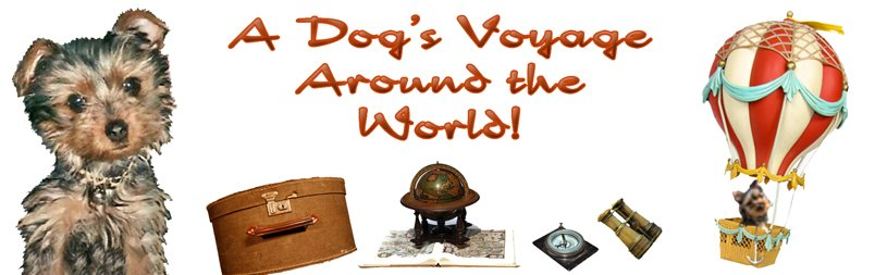 A Dog's Voyage Around The World™