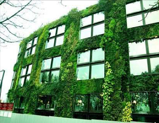 El rinc n de la ciencia jardines verticales for Jardines verticales concepto