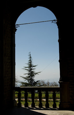 Posted by Ripple (VJ) : A pine tree stands out when viewed through an arch in the Viceregal house, Shimla