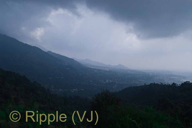 Posted by Ripple (VJ) : Palampur, Himachal Pradesh: View from Neugal Cafe