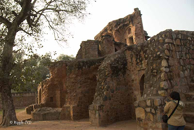 Posted by Ripple (VJ) : Humayun's Tomb, Delhi : Ruins of another tomb in the campus...