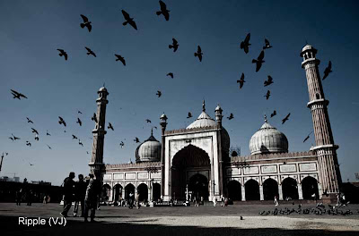 Posted by Ripple (VJ) : Delhi 6 - Jama Masjid : Pigeon-Studded Skies : JAMA MASJID @ OLD DELHI : The Masjid-i Jahan-Namaa , commonly known as the Jama Masjid of Delhi, is the principal mosque of Old Delhi in India and the largest mosque in Asia. Commissioned by the Mughal Emperor Shah Jahan, builder of the Taj Mahal, and completed in the year 1656 AD, it is one of the largest and best-known mosques in India. It lies at the origin of a very busy central street of Old Delhi, Chandni Chowk.<br /><br />The later name, Jaama Masjid, is a reference to the weekly Friday noon congregation prayers of Muslims, which are usually done at a mosque, the