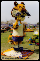 Flower Creations @ Noida Flower Show 2010: Posted by VJ @ www.travellingcamera.com : Every year Flower Show is organized in Noida Stadium near Spice mall (Sector-21-A). Noida Authority organize this event and many organization showcase different varieties of Flower, plants, flower-creations etc. There are prizes for best three florists based on there presented creation/flower/plant in a particular category. I have seen people from villages came to flower with lot of flowers and other creations.This year, when I went for Flower Show in Noida Stadium, there was an area where farmers from different villages had showcased some flower creation and they were being judged by a set of people after brief discussions with creators...This creation was winner and it was created with 28 different types of flowers...2nd runner up and according to experts, it was most difficult to create this one with the kind of flowers used for this..1st runner-up flower creation @ Noida Flower Show 2010Check out more photographs of Noida Flower Show by clicking below mentioned links: My Favorite Photographs of Noida Flower Show Other Plants @ Noida Flower Show 2010: Bonsai, Cactai etc Flowers with Black Magic of Adobe Camera Raw in Photoshop Elements... Photographs of colorful flowers with some basic editing : Colorful, Flowers, India, Noida, Uttar Pradesh