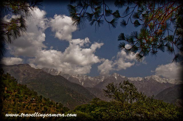 CATCH SOME AMAZING VIEWS OF SNOW-CAPPED HILLS FROM NEUGAL CAFE @ PALAMPUR (with Travelling-Camera) : PART-5 : Posted by VJ Sharma @ www.travellingcamera.com : Here is the next series of Photographs from Road Journey in Himachal Pradesh. Check out PART-1, PART-2, PART-3 and PART-4 of this journey before proceeding further...: Some folks from Delhi, enjoying ice-cream inside a Tea-Garden @ PalampurAfter a long journey from Mandi to Palampur through Hamipur and Sujanpur, we planned to celebrate the evening at Neugal Cafe. In above picture you are seeing a small shop on the way to Neugal cafe, where different varieties of KANGRA-TEA are available...A view of Tea Gardens on the way to Neugal cafe from main Market of Palampur...Palampur is the tea capital of northwest India but tea is just one aspect that makes Palampur a special interest place. Abundance of water and proximity to the mountains has endowed it with mild climate.Dhauladhar Range with snow-capped hills Palampur is a  green and fascinating hill station in the Kangra Valley in the Indian state of Himachal Pradesh which is surrounded on all sides by tea gardens and pine forests before they merge with the Dhauladhar ranges.A zoomed view of Dhauladhar range from Neugal Cafe @ PalampurPalampur is at the confluence of the plains and the hills - so the scenery shows the contrast the plains on one side and the majestic snow covered hills on the other side. Behind this town stands high ranges of Dhauladhar mountains whose tops remain snow covered for most part of the year.Here comes the photograph of Neugal Cafe.. Special thing about cafe is it's location.. I have been to this place many times but nevere entered inside this cafe.. We always preferred to have beer  on the edge of the hills in front of this cafe...The town has derived its name from the local word