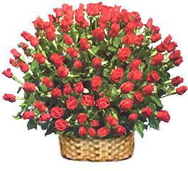 Flowers Gift for Valentine's Day