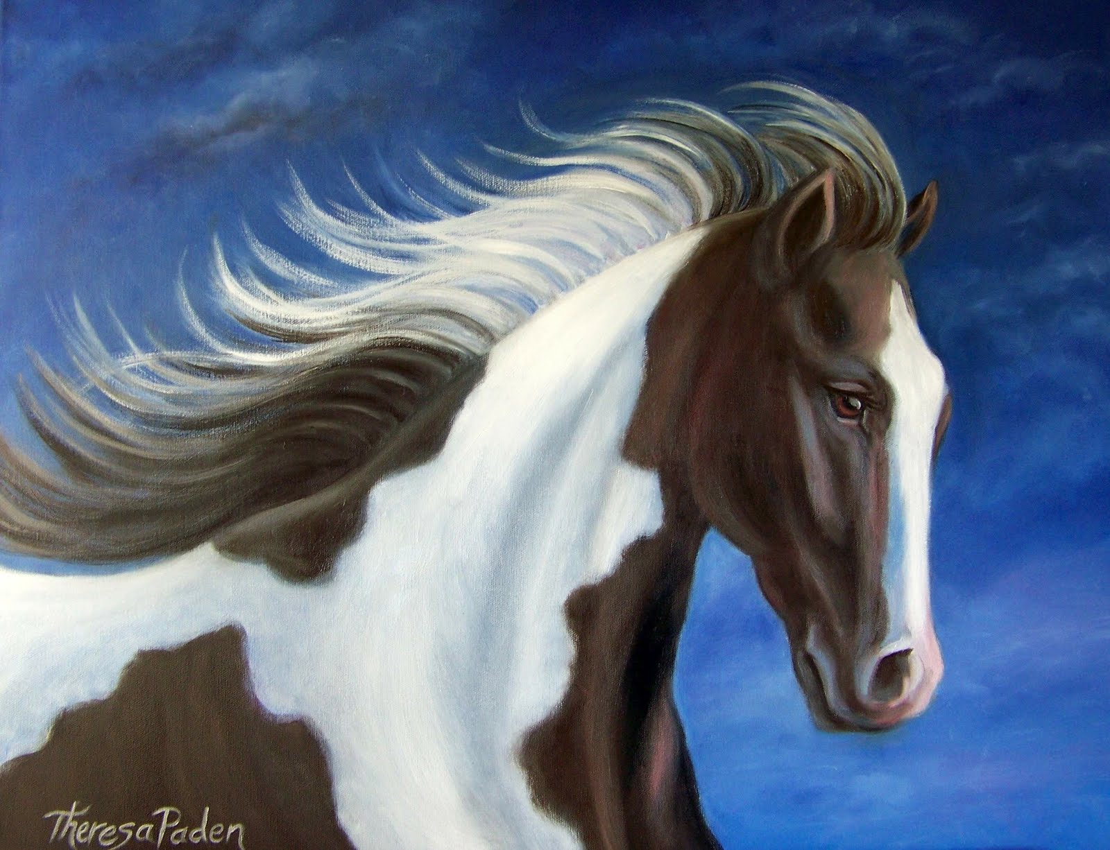 Black And White Paint Horse By Theresa Paden
