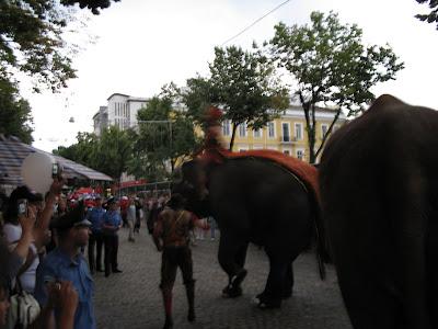 Одесса Слоны на Дерибасовской