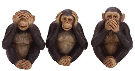 Monkey+See+Monkey+Do.jpg