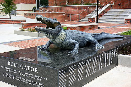 Only Gators Get Out Alive