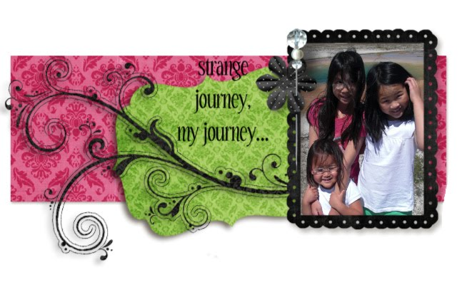 strange journey....my journey